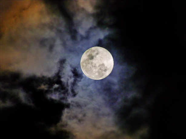Supermoon. Photo image by Ross Cochrane.